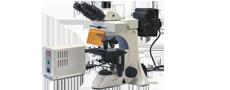 Mikroskopy do epifluorescencji
